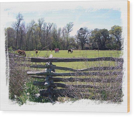 Horse Farm Wood Print by Ralph  Perdomo