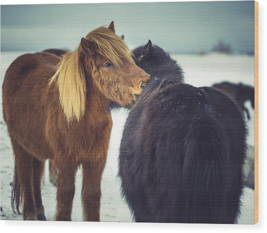 Horse Friends Forever Wood Print