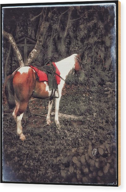 Horse In Red Wood Print