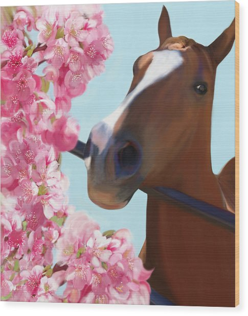Horse Pink Blossoms Wood Print
