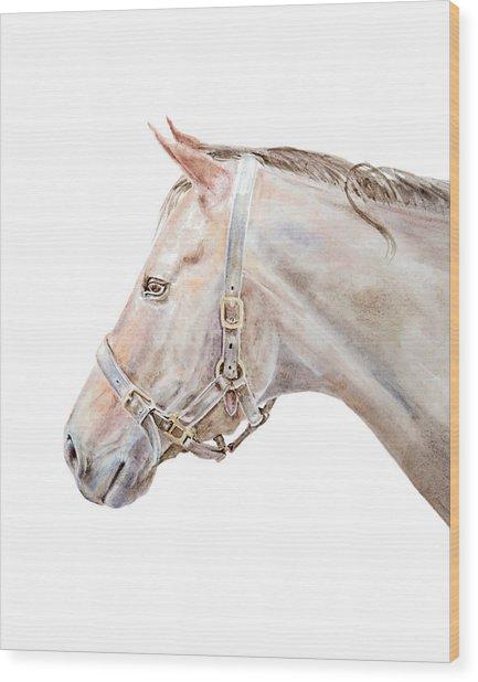 Horse Portrait I Wood Print