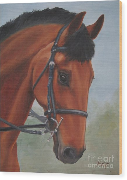 Horse Portrait Wood Print