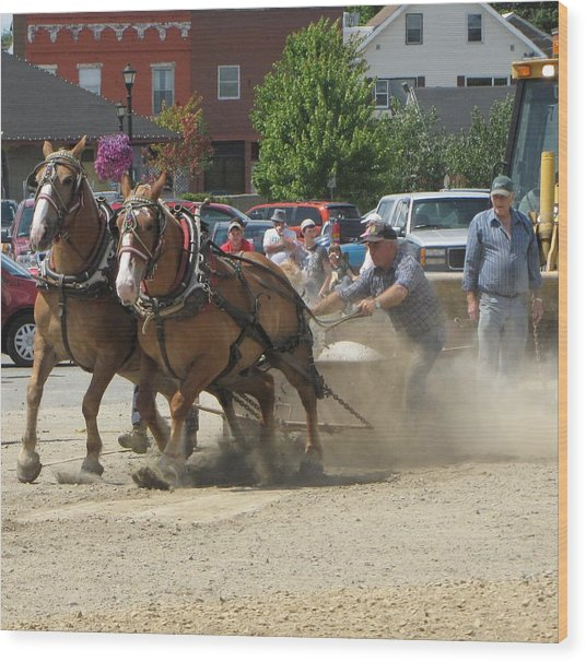 Horse Pull K Wood Print by Melissa Parks