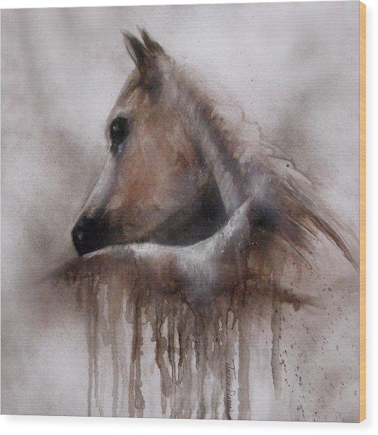 Horse Shy Wood Print