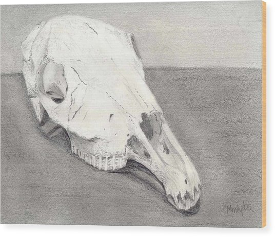 Horse Skull Wood Print by Mendy Pedersen