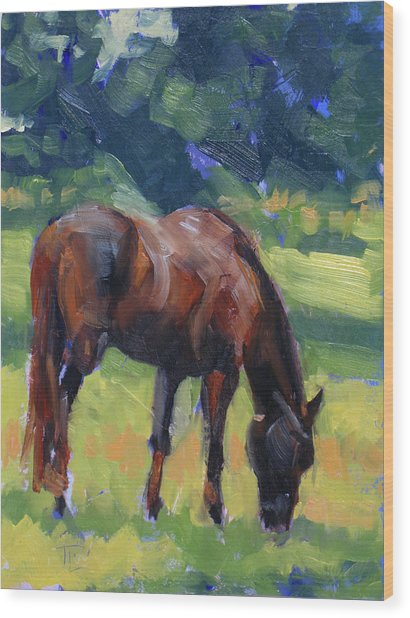 Horse Study No.40 Wood Print by Tracy Wall