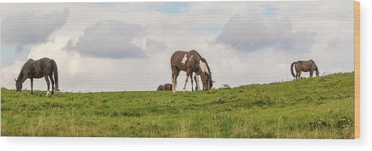 Horses And Clouds Wood Print