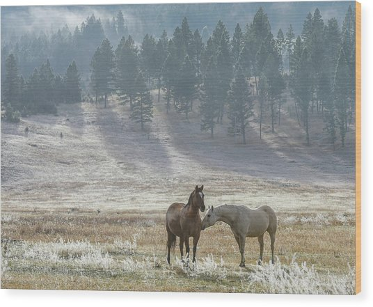 Horses On A Montana Ranch Wood Print