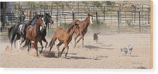 Horses Unlimited #3a Wood Print