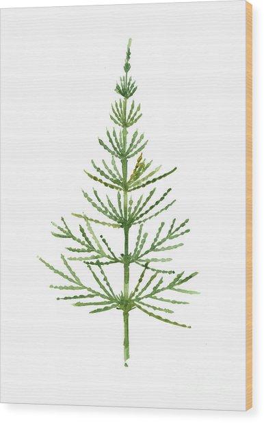 Horsetail Botanical Watercolor Poster Wood Print