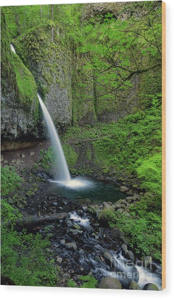Horsetail Falls Waterfall Art By Kaylyn Franks Wood Print