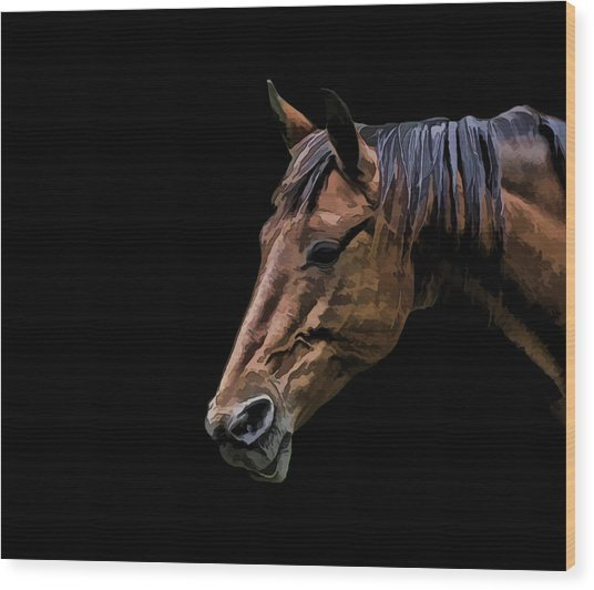 Horsing Around Wood Print by Gary Smith
