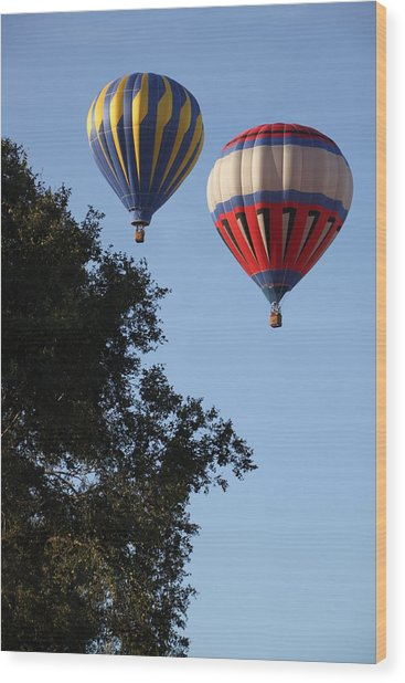 Hot Air Balloons Over Dansville Ny Wood Print