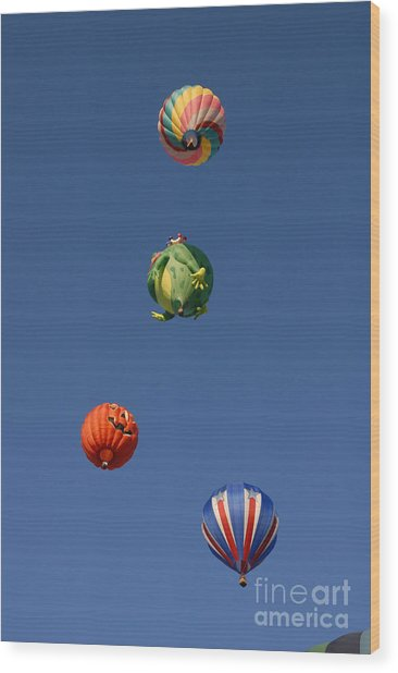 Hot Air Rally Wood Print by Dennis Hammer
