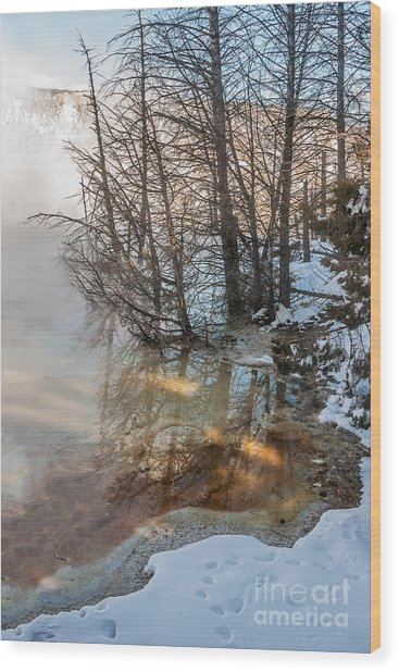 Hot And Cold In Yellowstone Wood Print