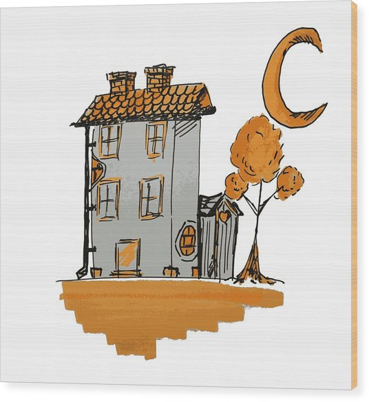 House And Moon Wood Print
