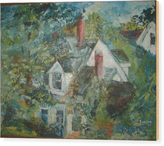 House In Gorham Wood Print by Joseph Sandora Jr