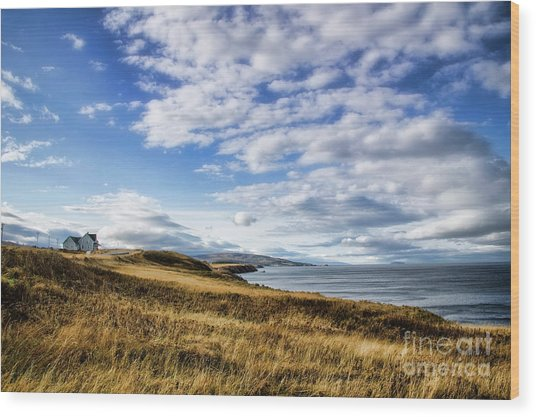 House On The Coast Wood Print by Scott Kemper