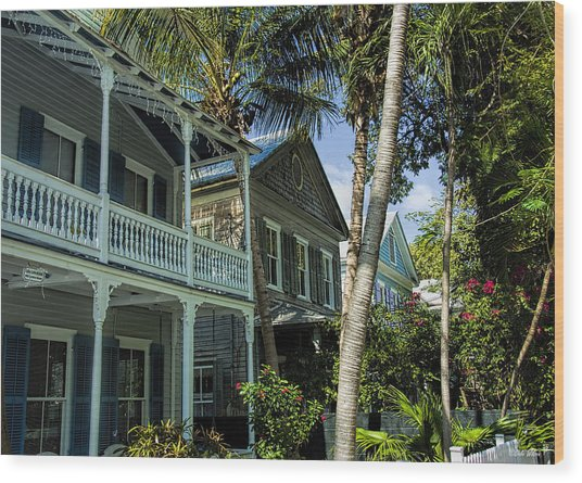 Houses In The Palms  Wood Print by Dale Wilson
