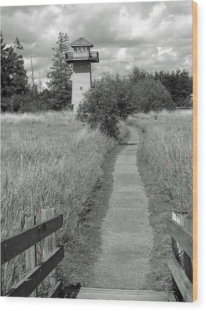 Hovander Tower Wood Print by Matthew Adair