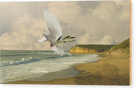 How Many Seas Must A White Dove Sail? Wood Print