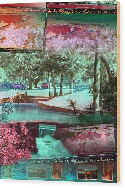 How Would You Like To Spend An Hour Wood Print by Deborah Hildinger