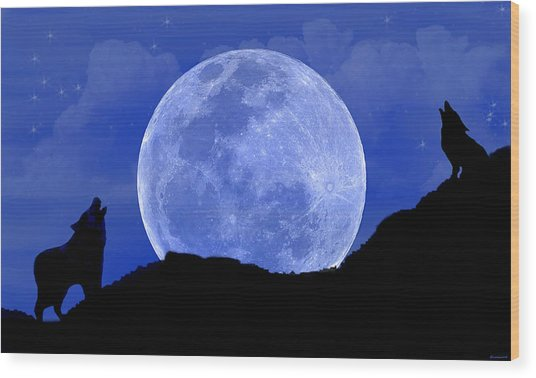 Howl At The Moon Wood Print by Evelyn Patrick