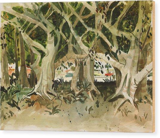 Howley's Banyans Wood Print
