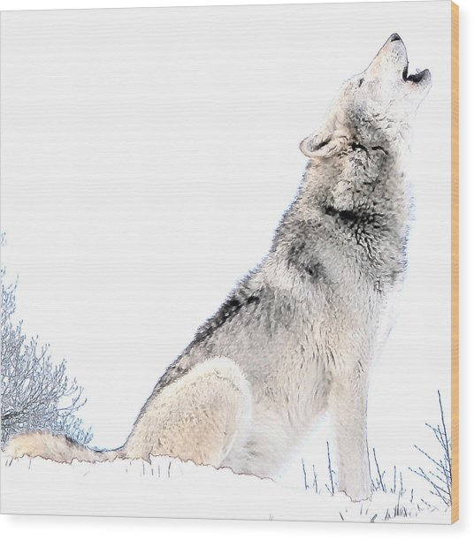 Howling Wolf 1 Wood Print