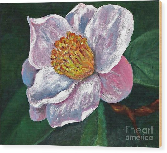 Hoyt Flower Oil 2 Wood Print by Emily Michaud