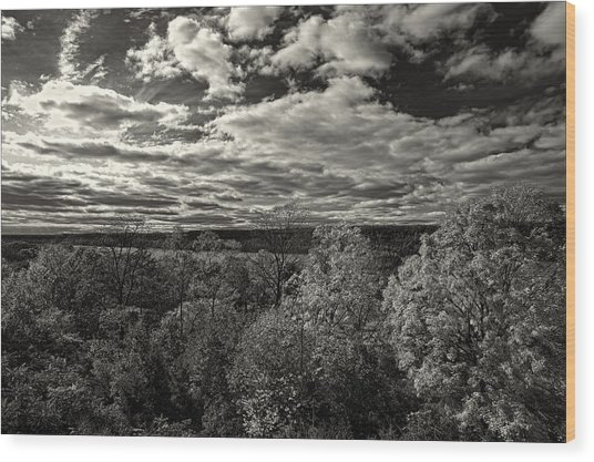 Hudson River And New Jersey Palisades From Wave Hill Wood Print