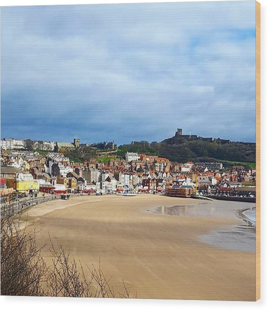 Huge Beach, Cute Town And A Castle Wood Print by Dante Harker