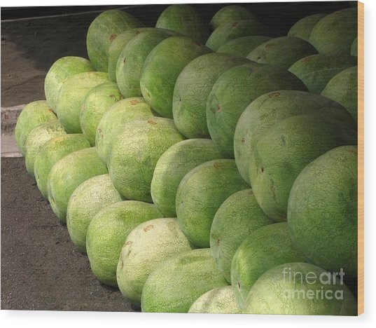 Huge Watermelons Wood Print