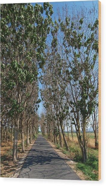 Hula Reserve Country Road Wood Print by Arik Baltinester