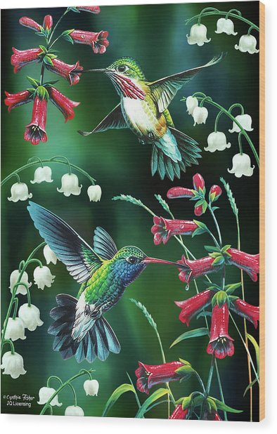 Humming Birds 2 Wood Print