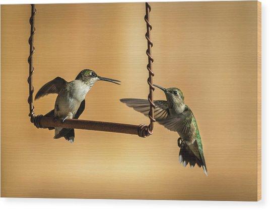 Humming Birds Wood Print