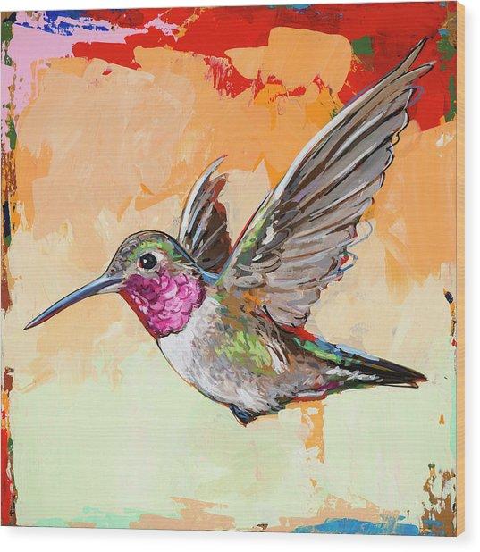 Hummingbird #13 Wood Print