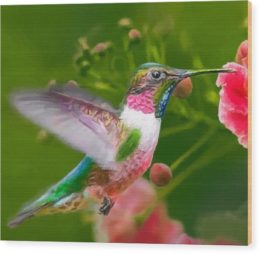 Hummingbird And Flower Painting Wood Print