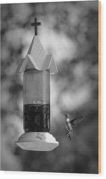 Hummingbird - Bw Wood Print