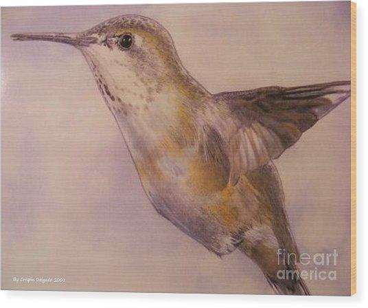 Hummingbird Wood Print by Crispin  Delgado