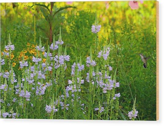 Hummingbird Heaven Wood Print
