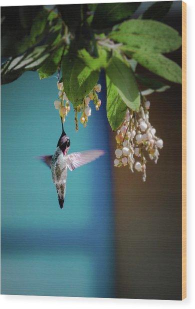 Hummingbird Moment Wood Print