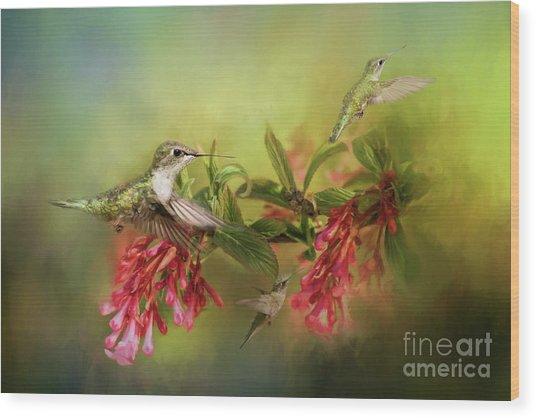 Hummingbird Paradise Wood Print
