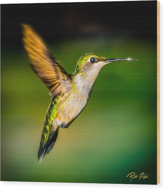 Hummingbird Sparkle Wood Print