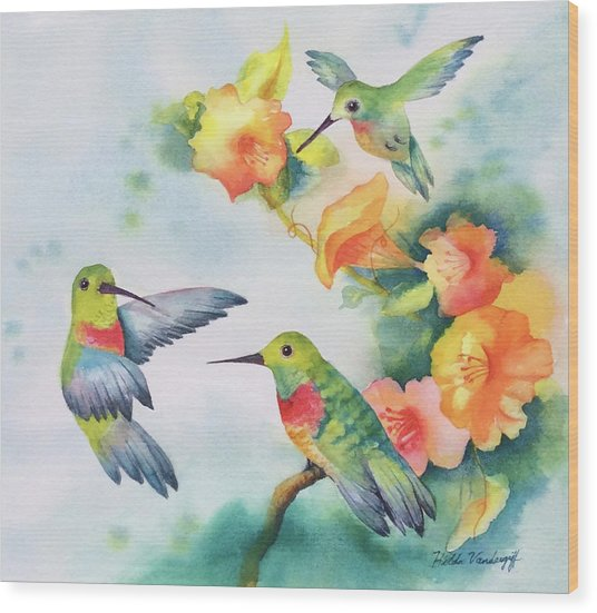 Hummingbirds With Orange Flowers Wood Print
