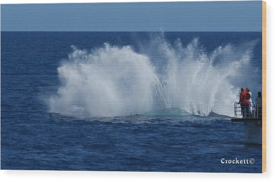 Humpback Whale Breaching Close To Boat 23 Image 3 Of 4 Wood Print