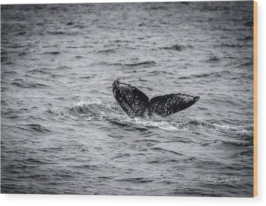 Humpback Whale Tail Wood Print