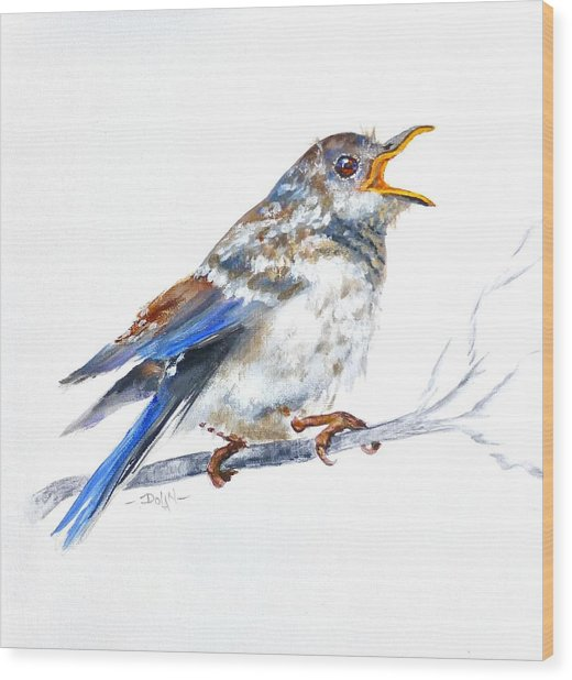 Hungry Fledgling Blue Bird Wood Print