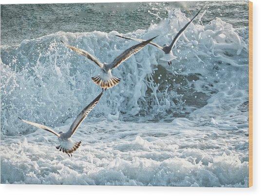 Hunting The Waves Wood Print