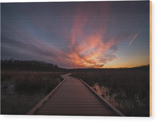 Huntley Meadows Sunset Wood Print by Michael Donahue